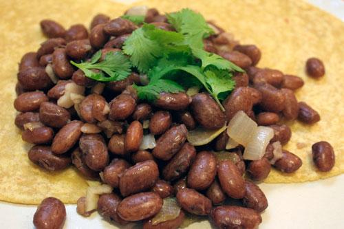 basic.beans