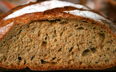 "Whole Wheat French Bread Made Easy with ""Cool Control"""