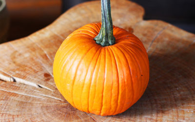 Pumpkin Spice Spelt Muffins